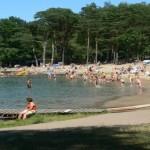 Pływanie naplaży wMierzynie – 15 sierpnia