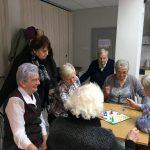 Dzienny Dom Seniora podsumowuje rok swojej pracy