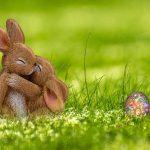 Powitaj Wiosnę wKłodzisku