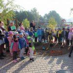 Przedszkolaki wsadziły Drzewo Pamięci Jana Rzepy