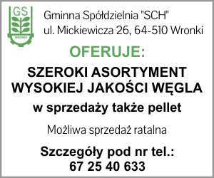 GS Wronki węgiel pellet