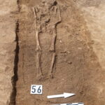 Kolejne znaleziska archeologiczne natrasie budowy obwodnicy Wronek