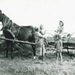 Dziś przypada święto: Dzień Kobiet Wiejskich – pisze Irena Wojciechowska